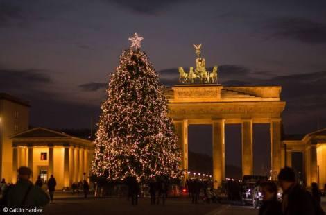 Weihnachtsbaum vor dem Brandenburger Tor. Copyright: Caitlin Hardee