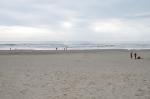 Post-surf beach meander